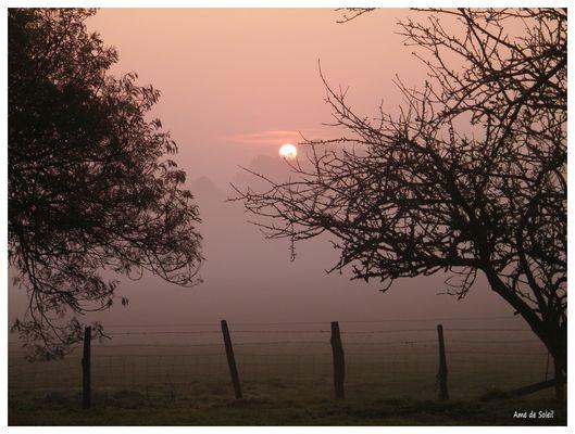 Lever de soleil dans la brume
