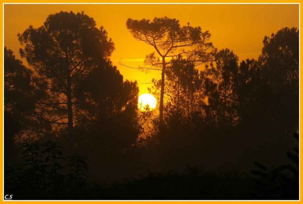 lever de soleil dans les landes
