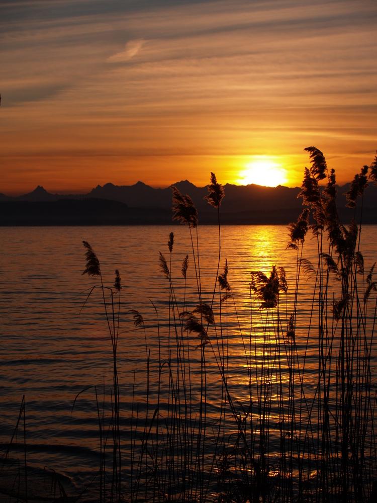 Lever de soleil du 26 décembre 2009