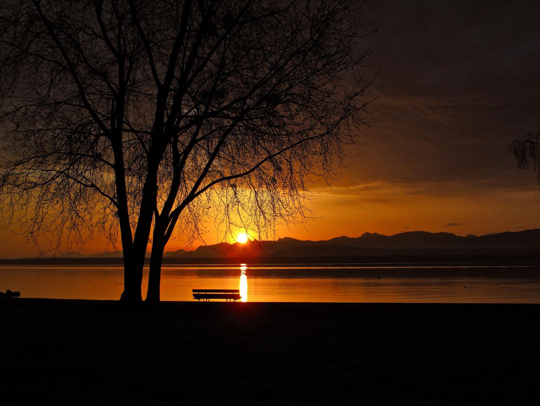 Lever de Soleil sur le Lac Léman un jour d'hiver.