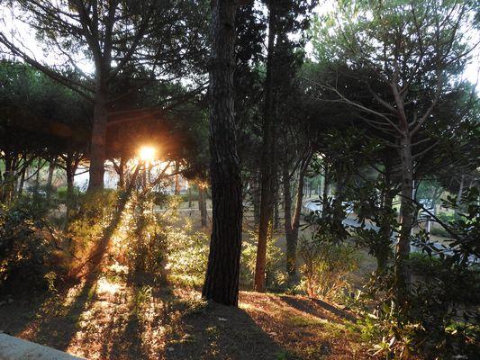 lever du soleil à la grande motte