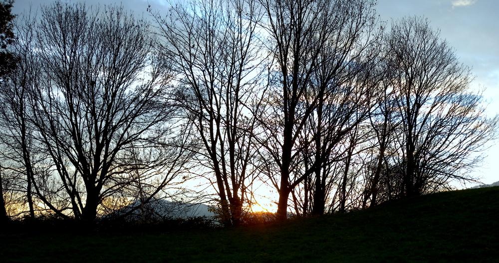 Lever du soleil / El amancer / Sonnenaufgang