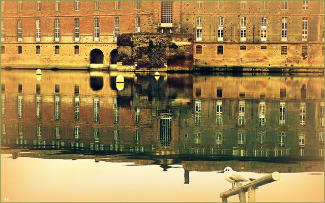 L'Hiver à Toulouse -3-