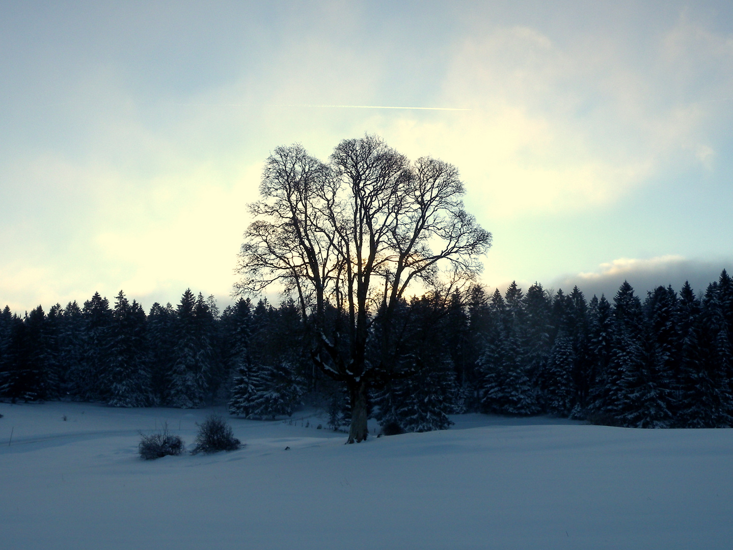 L'hiver dans le.. / Invierno en el.. / Winter im = Jura...01
