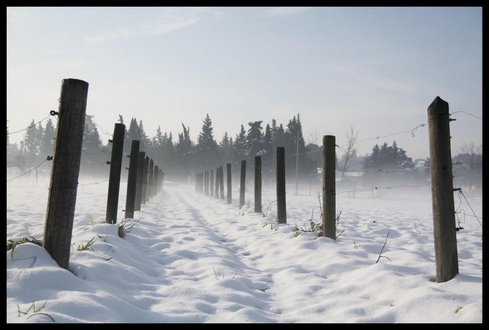 L'hiver du luberon....la neige, ici aussi ça nous gagne...