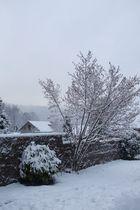 L'hiver est tout blanc..