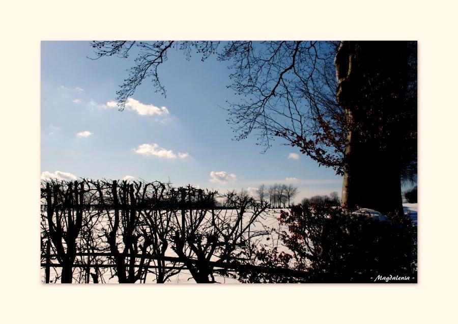 L'hiver et ses contrastes
