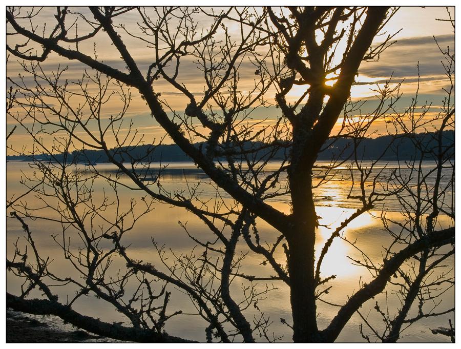 L'hiver sur le Golfe du Morbihan