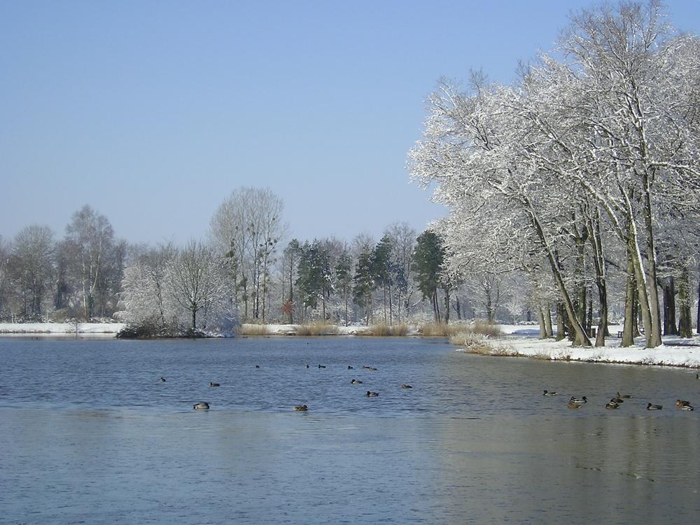 l'hiver tient bon.......