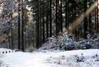 l'hiver,3
