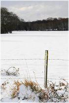 L'hivers et cette neige