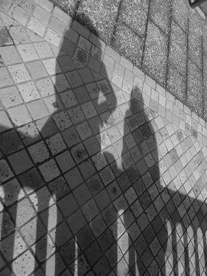L'homme est l'ombre d'un songe, et son oeuvre est son ombre....