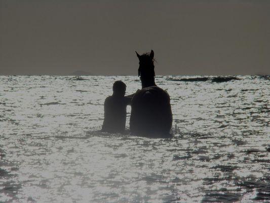 l'homme et le cheval