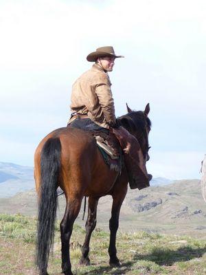 L'homme & le cheval.