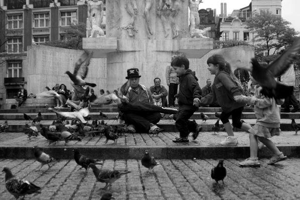 L'homme pigeons
