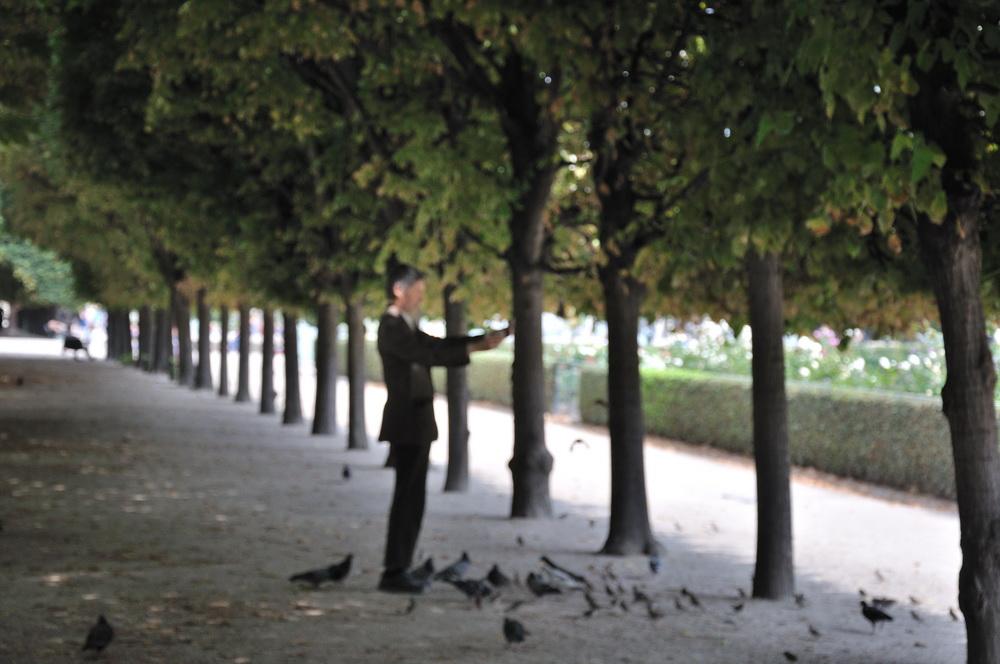 L'homme qui aimait les oiseaux