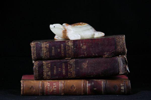 libros muy viejos y tortuga