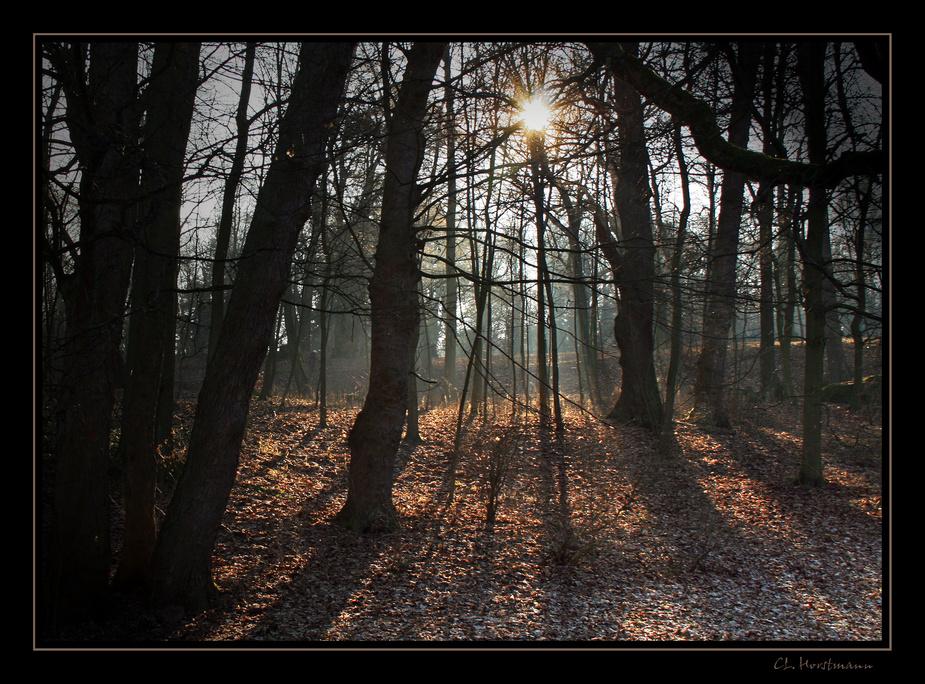 ...Licht...