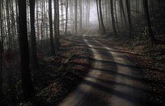 Licht am Ende des Nebels