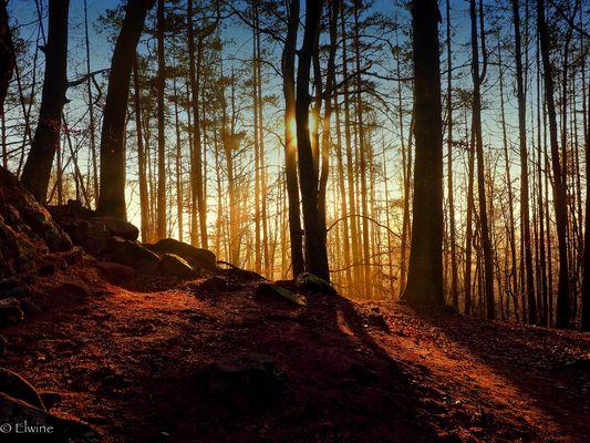 Licht am Ende des Wegs ....