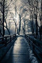 Licht am Ende des Winters