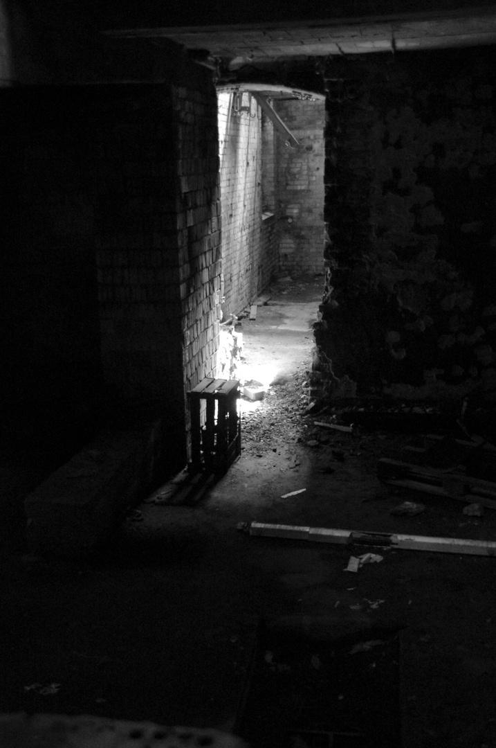 """""""Licht im Dunklen"""""""