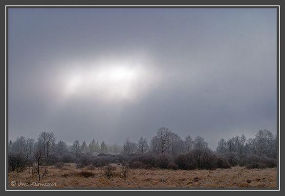 Licht im Hohen Venn (01887)