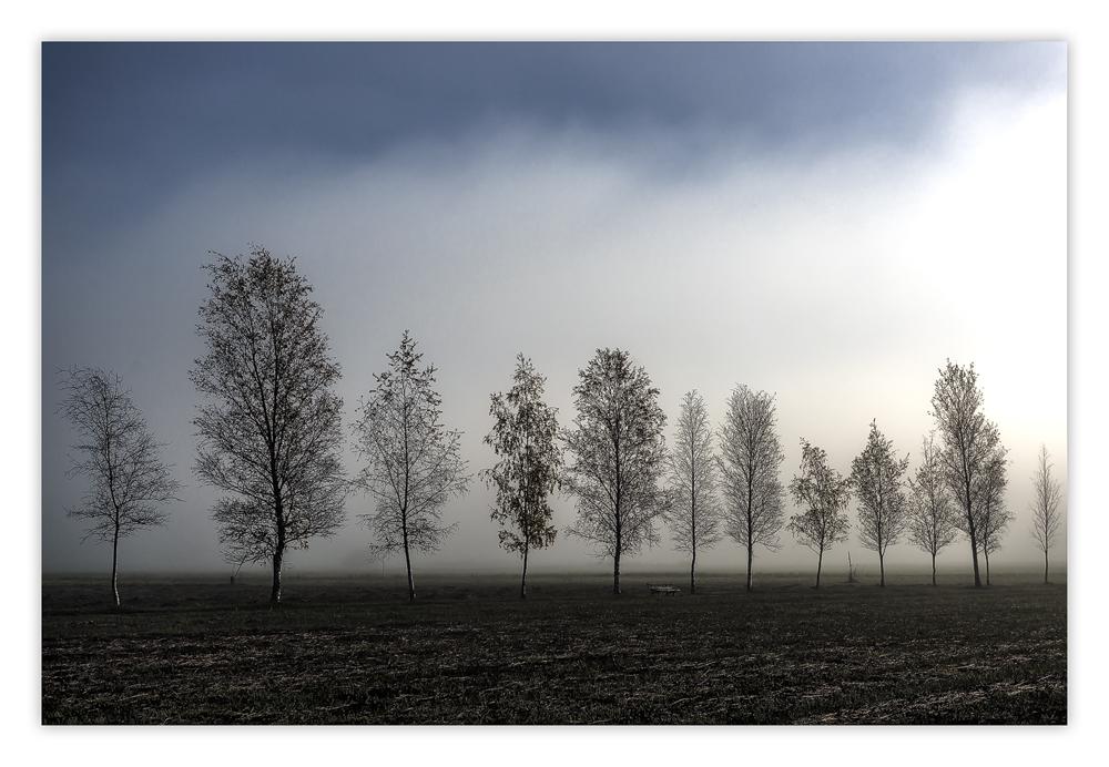 Licht im Nebel...