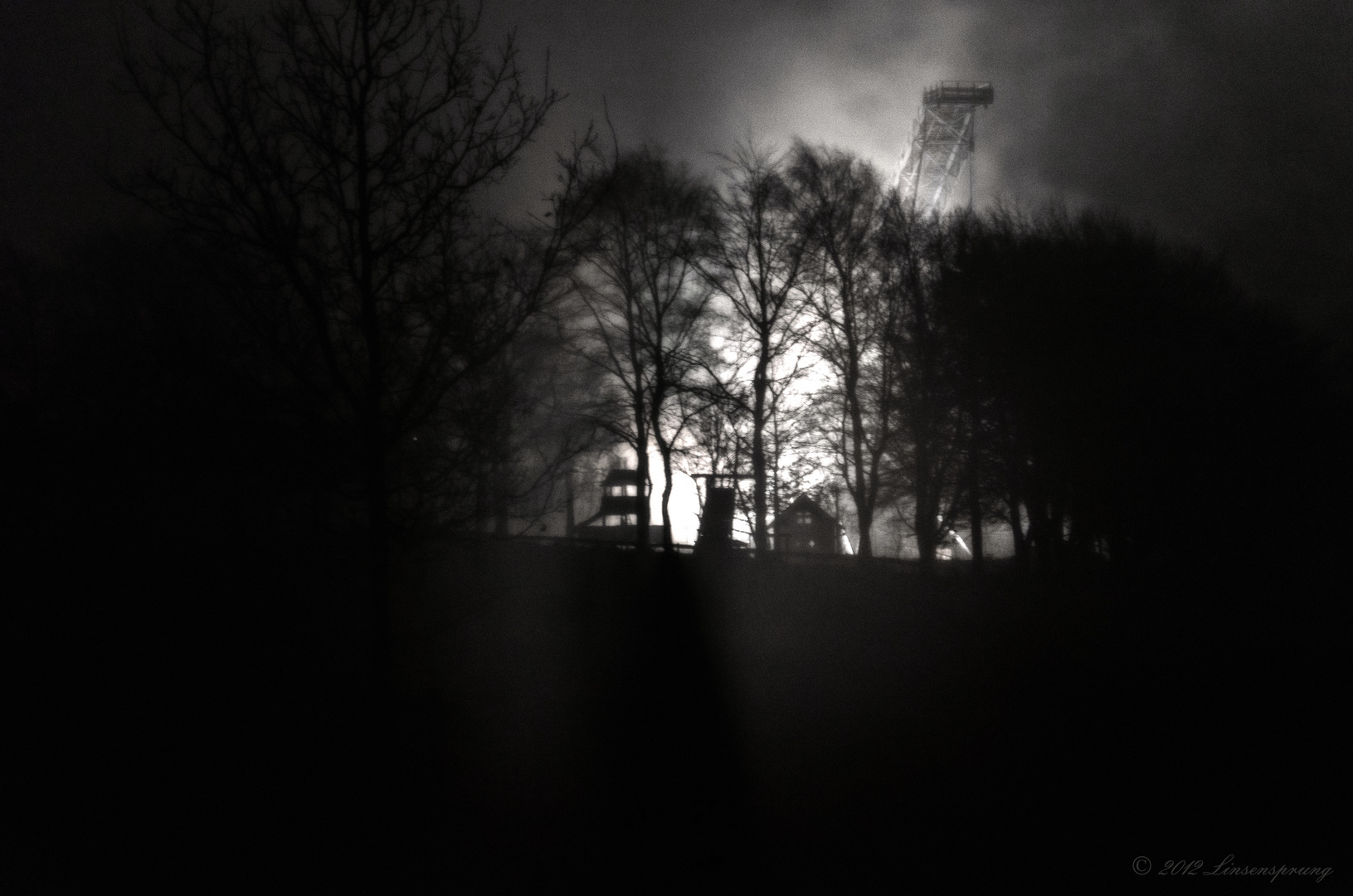 Licht im Nebel I