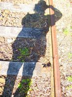 Licht im Schatten