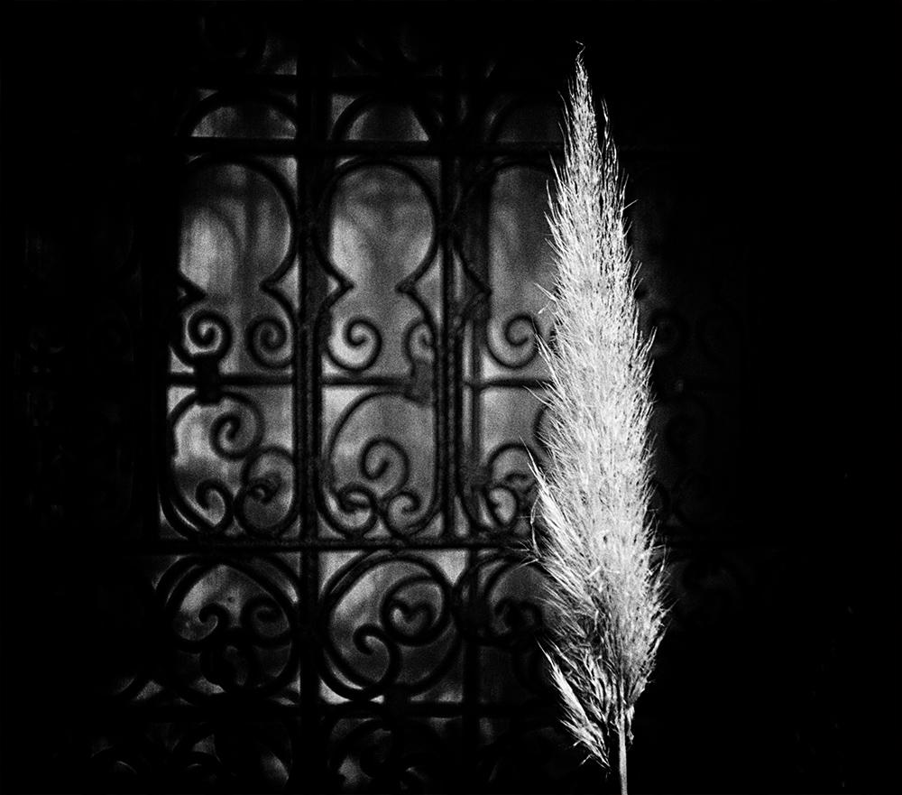 ...Licht ist immer irgendwo............