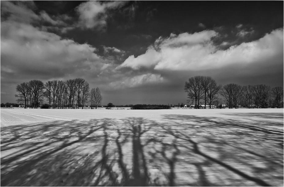 Licht & Schatten II