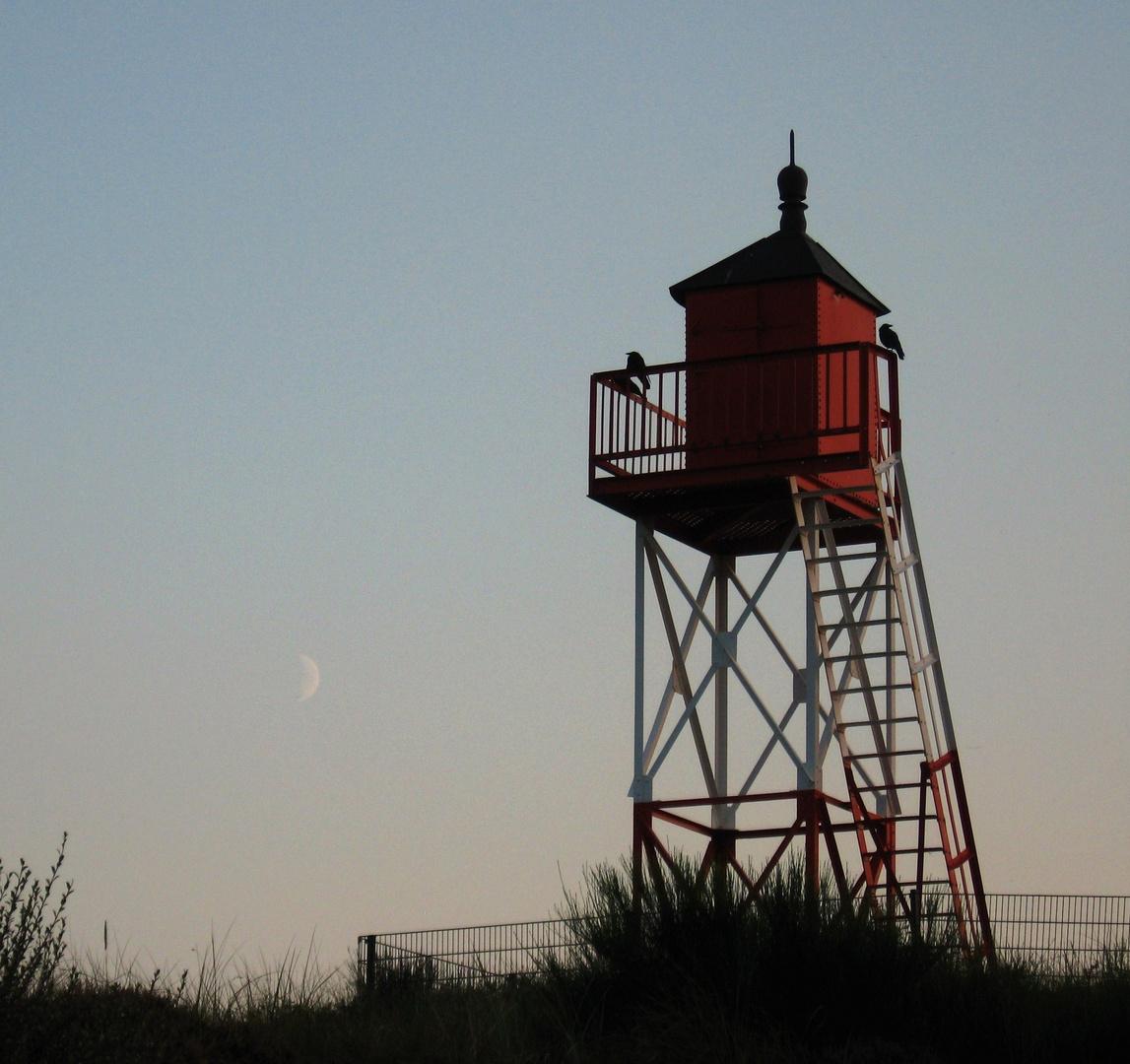 Licht, Schatten, Vögel, Mond