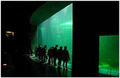 Licht-Theater