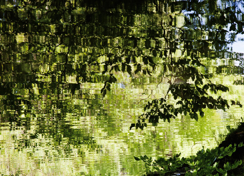 Licht trifft Wasser 2