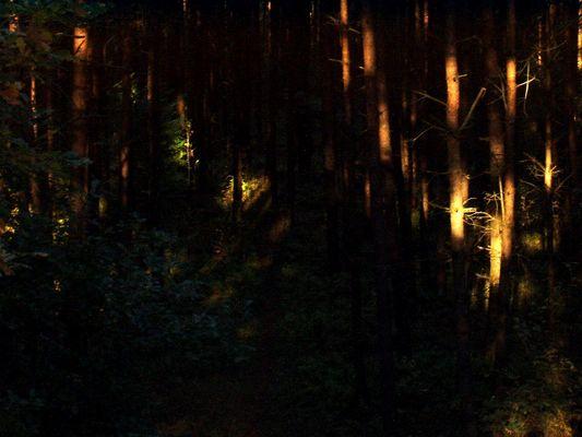 licht tritt in den schatten