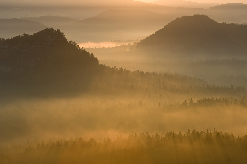 Licht und Nebel...
