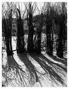 Licht und Schatten 1