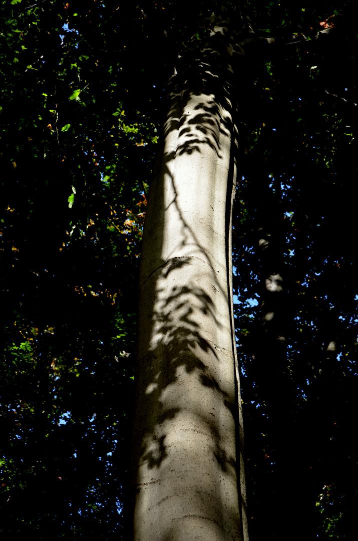 Licht und Schatten Teil 4