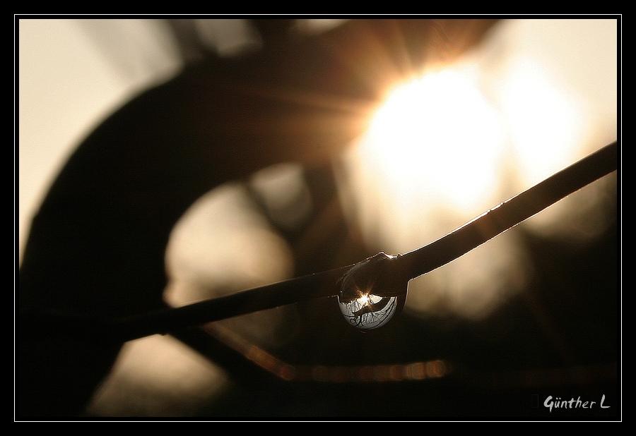 Licht & Wasser