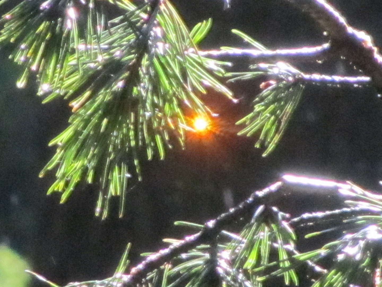 Lichtbrechung am Abend