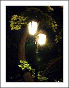 *** Lichter in der Nacht ***