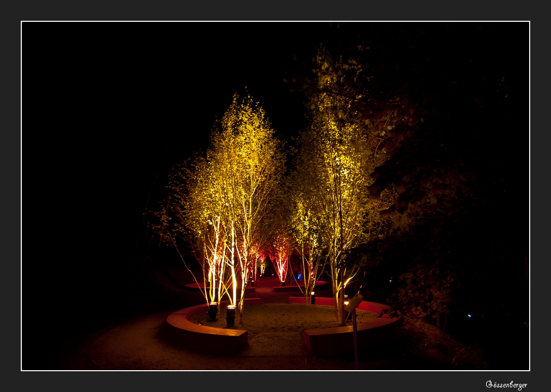 Lichtgarten 15