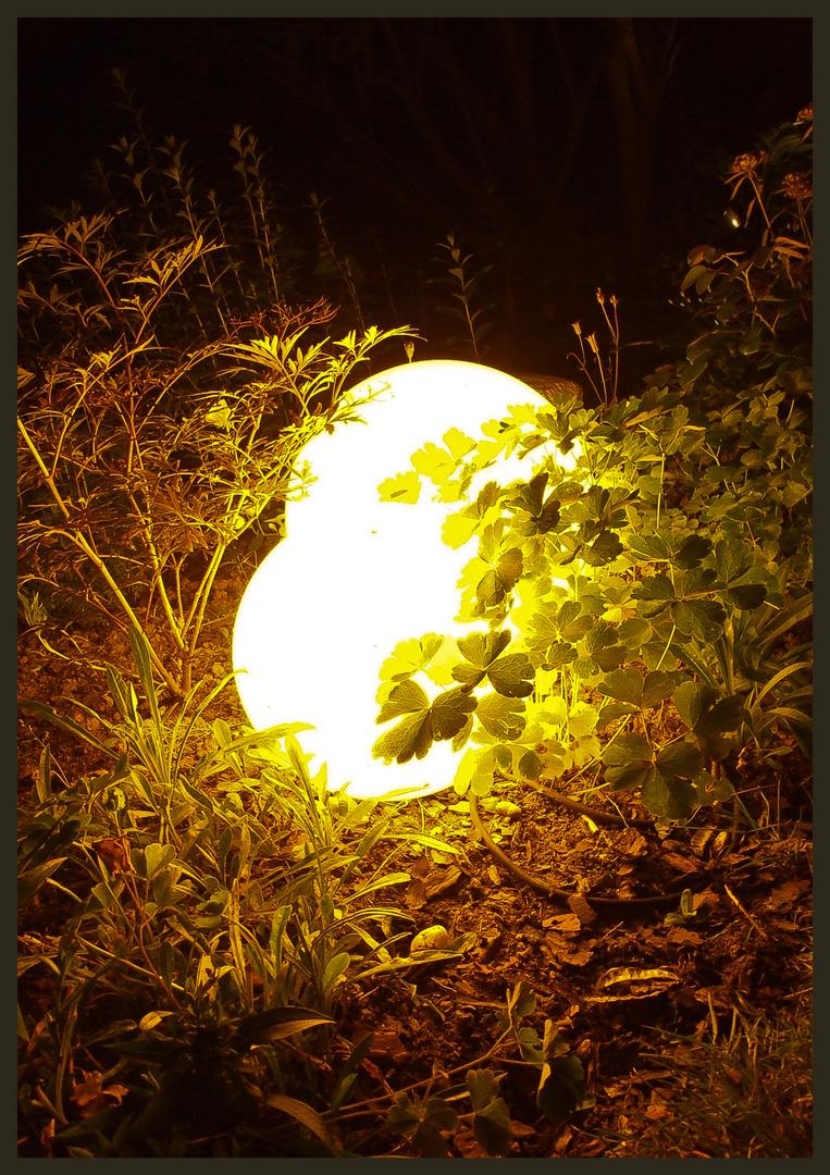 lichtspiel I