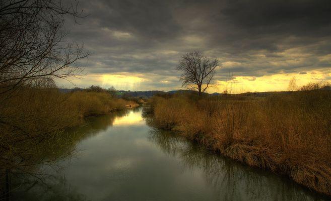 Lichtstimmung im Naturschutzgebiet Moos am Bodensee