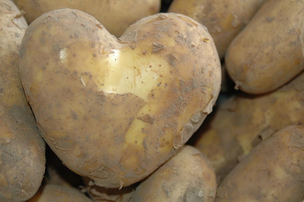 liebe geht durch den magen kartoffeln mit herz foto bild pflanzen pilze flechten. Black Bedroom Furniture Sets. Home Design Ideas