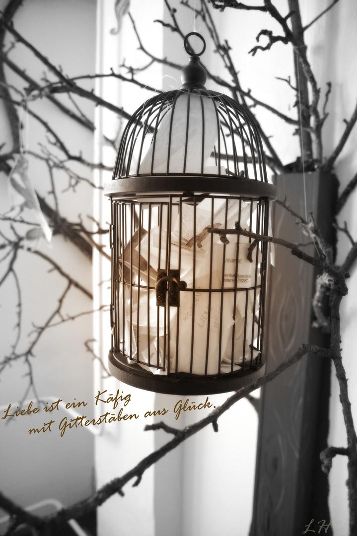 Liebe ist ein Käfig mit Gitterstäben aus Glück. - Claudia Cardinale
