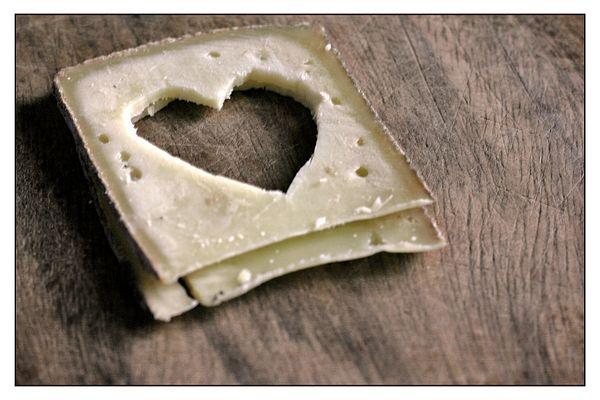 *liebe ist einfach nur käse*