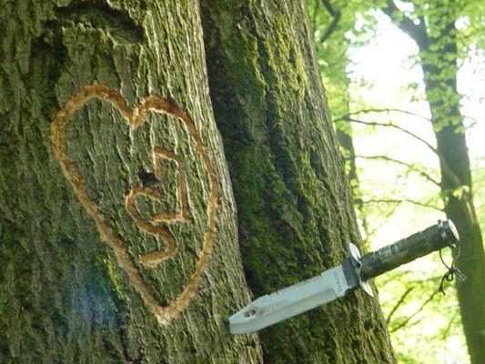 Liebe, stark wie ein Baum