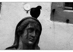 Lieber einen Vogel als kein Hirn... Aussenborder treiben auch an...